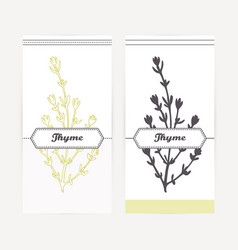 Hand drawn thyme in outline and silhouette style vector