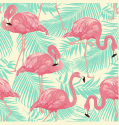 tropical bird flamingo vector image