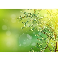 Nature background with green fresh leaves EPS 10 vector image