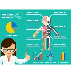 Medical concept doctor woman showing anatomy vector