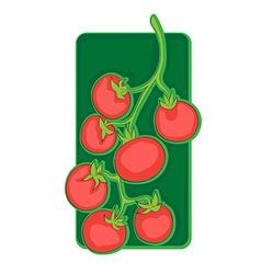 Cherry tomato clip art vector