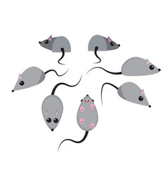 Set of rat in flat style vector