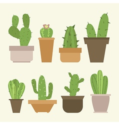Mini cactus set vector