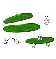 Cartoon crunchy green cucumber vegetable vector image vector image