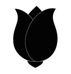 Cute rose decorative icon vector