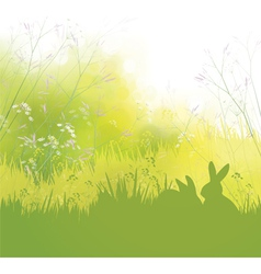 rabbits grass background vector image