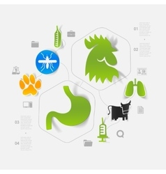 Veterinary sticker infographic vector image