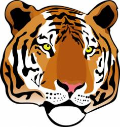 Siberian tiger vector image vector image