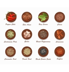 Different kinds of spices on wooden board vector