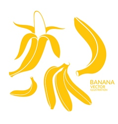 Banana set vector