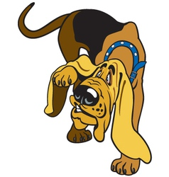 cartoon bloodhound vector image vector image
