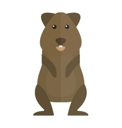 Cute standing brown hamster cartoon flat vector image vector image