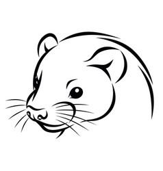 line ink ferret head simple vector image vector image