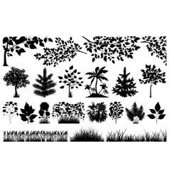 Silhouette of floral elements vector image