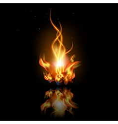 fire with reflection vector image