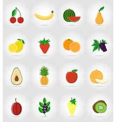 fruits flat icons 17 vector image vector image
