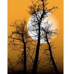 Silhouette of the tree vector