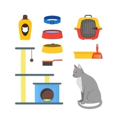 Cartoon cat equipment set vector