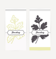 Hand drawn parsley in outline and silhouette style vector