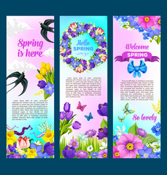 Spring holidays greeting flowers banners vector