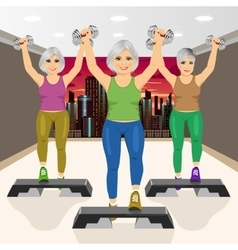 Three senior women doing aerobic exercises at gym vector