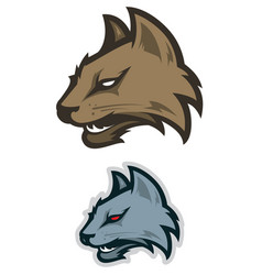 wild cat sport logotype vector image vector image