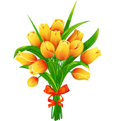 Yellow tulips with ribbon vector