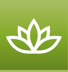 white lotus symbol on green background spa and vector image