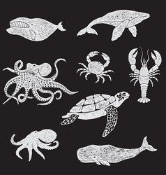 collection of marine animals vector image
