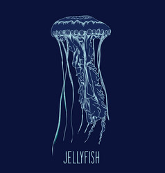 hand drawn jellyfish vector image