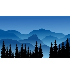 Silhouette of the hills and spruce vector