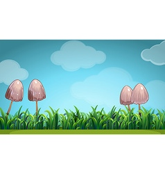 Scene with mushroom in the field vector