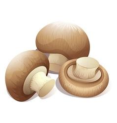 Fresh mushroom in three pieces vector image vector image