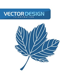 Floral icon design vector
