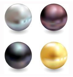 Beautiful pearls realistic vector image