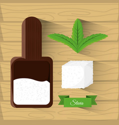 Stevia natural sweetener leaves and spoon vector