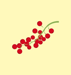 Red currant berry icon vector