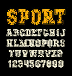 Serif font in sport style with contour vector
