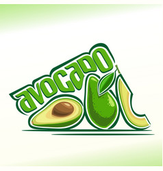 Avocado fruits still life vector