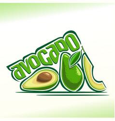 Avocado fruits still life vector