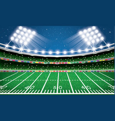 american football stadium arena vector image