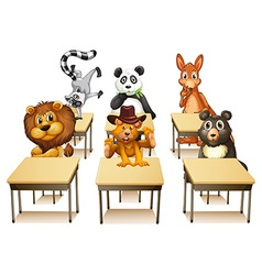 Animals in classroom vector image