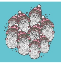 Christmas winter owls vector image vector image