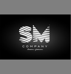 Sm s m letter alphabet logo black white icon vector