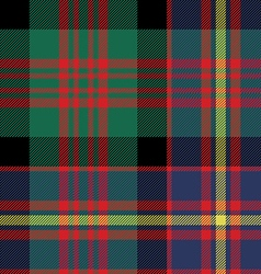 Cameron of erracht tartan seamless pattern fabric vector