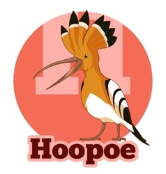 ABC Cartoon Hoopoe vector image
