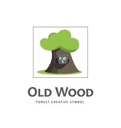 Cartoon old tree icon with owl vector