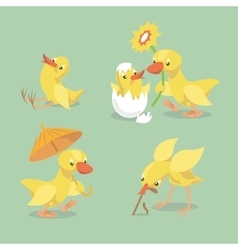 Cute chicken and duckling vector