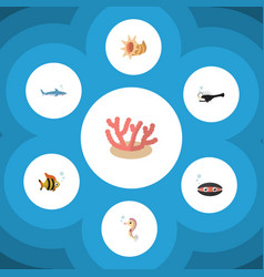 Flat icon marine set of algae fish shark and vector
