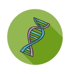 Human DNA icon vector image vector image